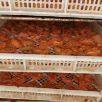果脯烘干机  农副产品烘干设备 宠物食品烘干设备厂家