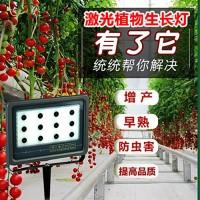葡萄补光灯价格/激光大棚植物补光灯有用吗 植物补光灯价格