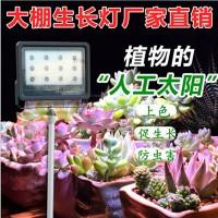 激光大棚补光灯价格/植物补光灯有用吗 植物生长灯
