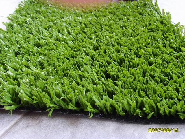 20mm网状草