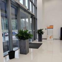 植租赁 办公室绿植租赁 花卉租摆 花卉租赁免费更换
