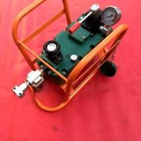 轻型气动泵