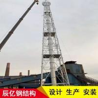 化工烟囱塔-环保烟囱塔-火炬烟囱塔-辰亿钢结构