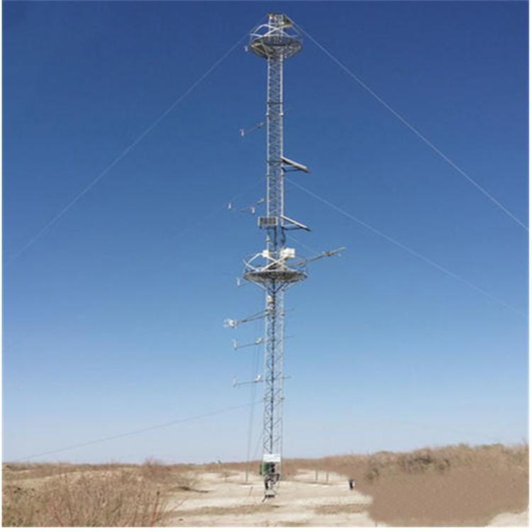 5G杆 5G通讯塔  5G通讯铁塔 泰翔制作 厂家销售