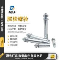 膨胀螺丝 膨胀丝金属膨胀丝国标外六角螺栓紧固厂家直销膨胀丝