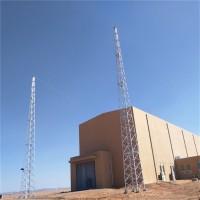 35米避雷线塔 圆钢避雷塔 避雷针塔 泰翔钢结构 厂家现货 支持定制