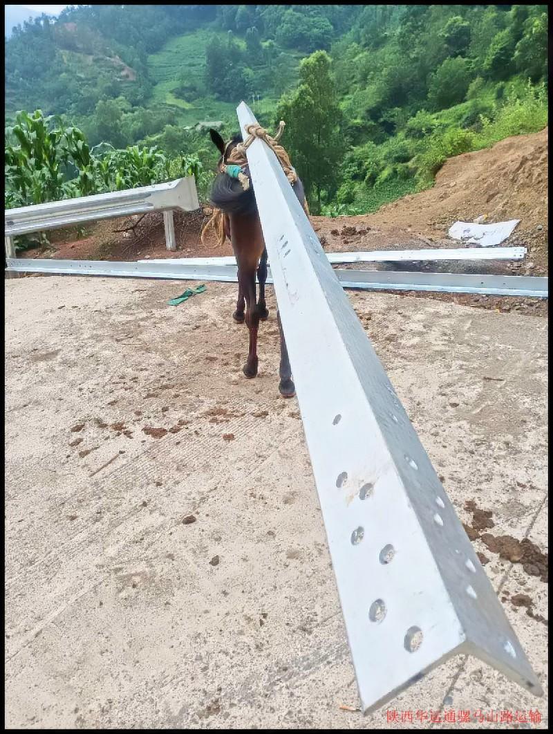 钢铁骡马运输