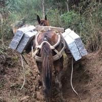 石材骡马运输