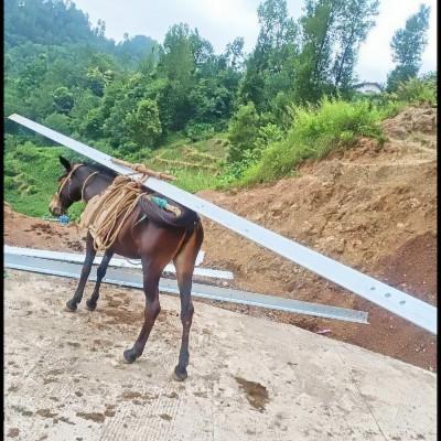 钢筋骡马运输